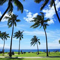 Blue Hawaii wants red China