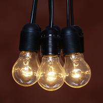 Battle of the bulb