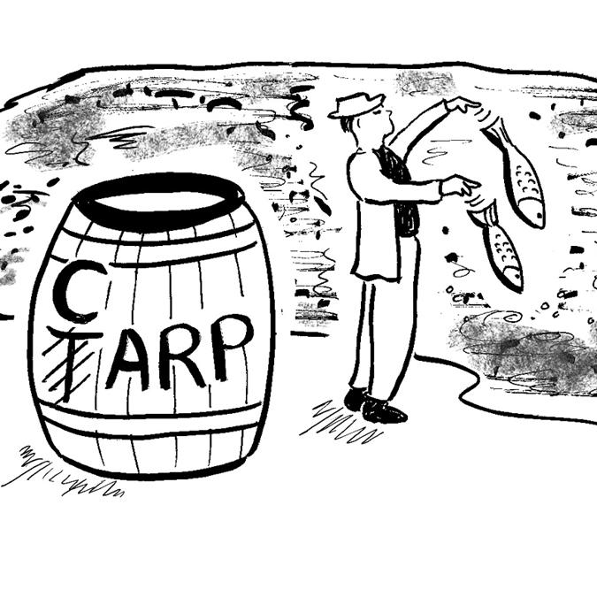 Carp not TARP for China's Lin