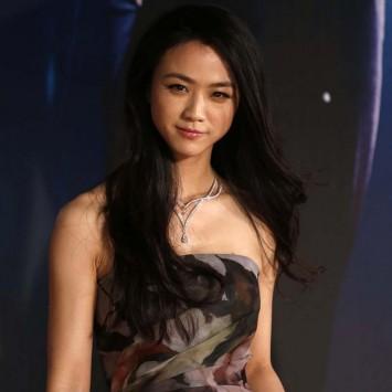 Chinese actress Tang Wei poses on red carpet at Hong Kong Film Awards