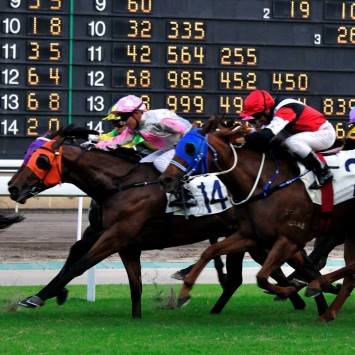 Horseracing w