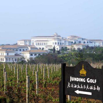 cofco junding vinyard