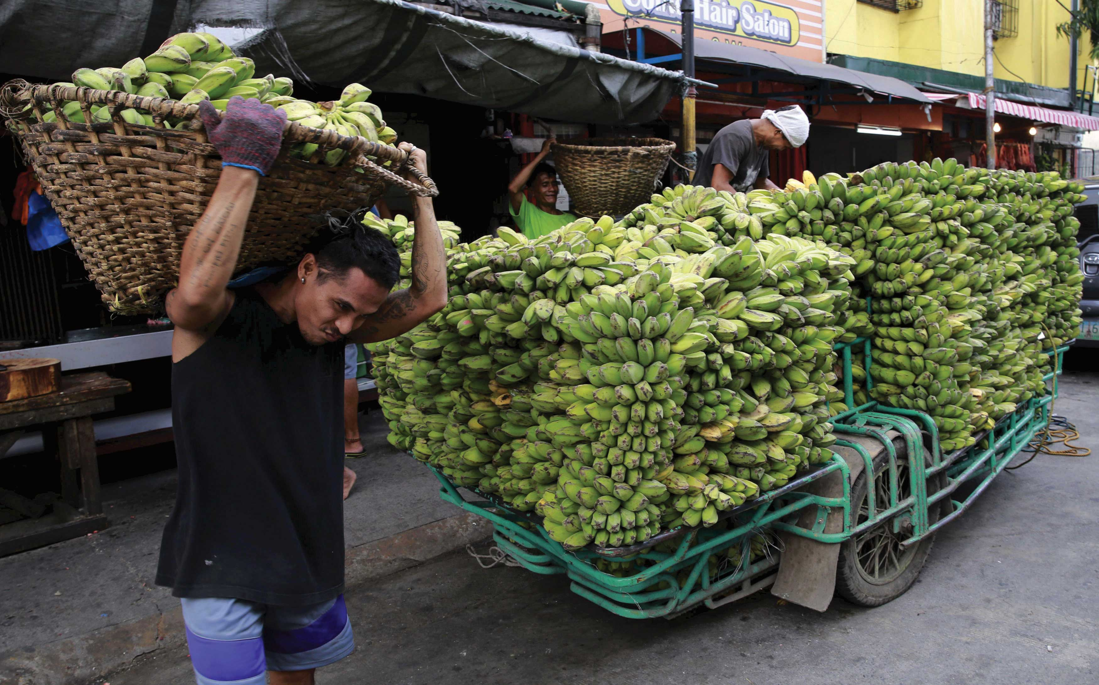 Another possible beneficiary of the new rail routes: fruit from the Philippines