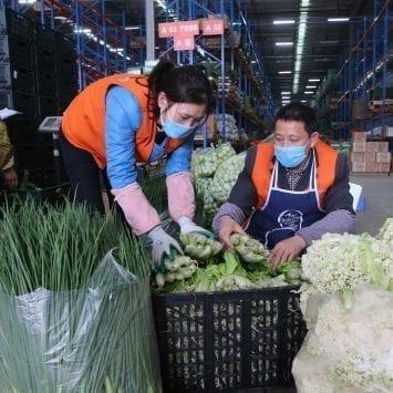 Vegetable-Vendors-w