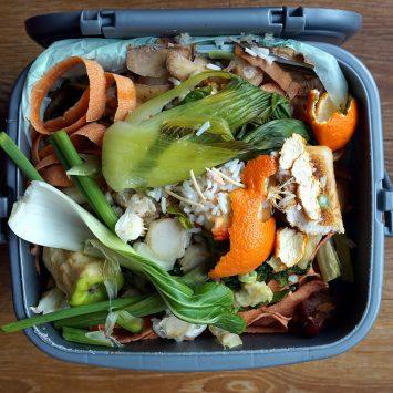 Food-Waste-w